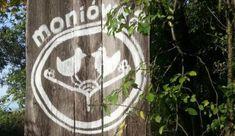 Witaj na Moniówka | Moniówka