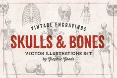 "Download All 277 results for ""skull"" unlimited times for $29 per month with Envato Elements. All from independent designers."