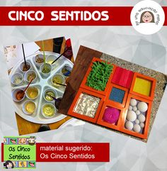 CINCO SENTIDOS.fw