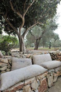 Coin repos au coeur de l'oliveraie  Photographe : Henri Del Olmo