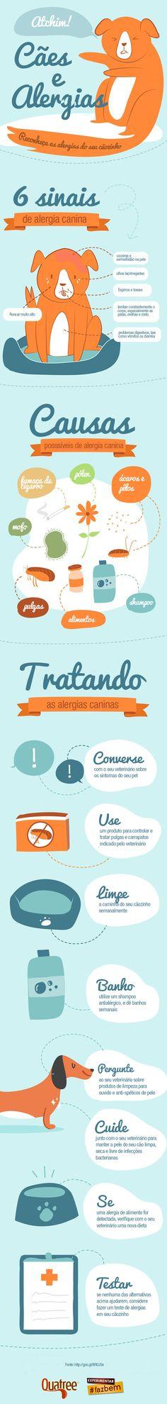 Infográfico que explica o que você precisa saber sobre alergia canina. Leia com atenção e compartilhe com os seus amigos que também são apaixonados com cães.