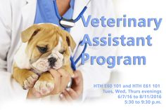 Love animals? Then you'll love our Veterinary Assistant Program! ‪#‎WeRTriton‬
