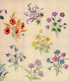 """Wild flowers"", beautifully embroidered wild flowers as featured in ""Needlewoman & Needlecraft"", April 20th, 1950, issue No.42."