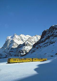 """The Alpine Train - Imagen del tren alpino 'Wengerenalpbahn """"con el Wetterhorn (3701M) en el backgrounf, en el Oberland bernés."""