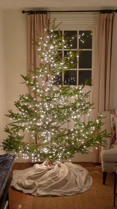 This post says a lot about me. I'll let you qualify that. So here's my $24.50 tree. I forgot to take a picture of it be...