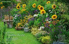 Post aus der Mein schöner Garten Redaktion - das erwartet Sie im neuen Heft