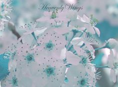 Soft Tiffany Nursery Decor 8x10 Photo Set Cottage by HeavenlyWings, $60.00
