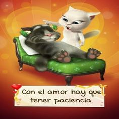 In love you have to be patient Funny Spanish Memes, Spanish Humor, Thug Life, Shopkins, Funny Signs, Cool Cats, Bunt, Emoji, Pikachu
