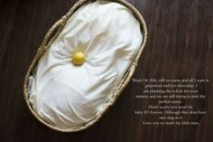 documenting pregnancy, what size is baby, photography, maternity, laurie endsley, laurieendsley.com