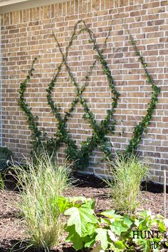Garden Landscaping Plants Add a gorgeous focal point to your landscape by adding this diamond patterned wire trellis to your yard. Easy DIY wire trellis you can complete in an afternoon along with a trellis plant selection idea list! Wire Trellis, Garden Trellis, Trellis On Fence, Building A Trellis, Flower Trellis, Landscape Design, Garden Design, Garden Wall Designs, Low Maintenance Garden