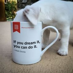 Happy Monday! Here is a puppy-sized cup of #bencouragement. ▬▬▬▬▬▬▬▬▬▬▬▬▬▬▬▬▬▬▬ Tag a friend for some puppy kisses.