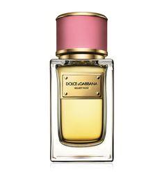cecf0c91 Dolce&Gabbana Perfume Fragrance, Best Perfume, Patchouli Perfume, Citrus  Perfume, Eau De Cologne