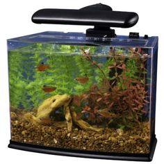 Amazon.com: Tetra Crescent Aquarium Kit, 3-Gallon: Pet Supplies