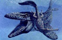 mosasaurus.