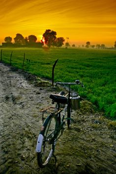 punjab beauty
