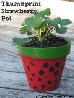 How to make a thumbprint strawberry pot | Fun kids gardening activity | Handmade gift idea