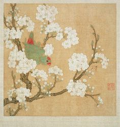 Unknown (Chinese)  Parrot and Insect Among Pear Blossoms by an unknown Chinese artist  13th century