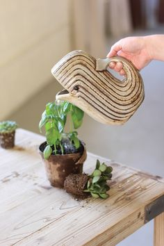 """This adorable ceramic water pitcher is perfect for tending to your garden, indoor or out. With its clever whale shape, this piece is equal parts functional and decorative! 7"""" x 4"""" x 8½""""t"""