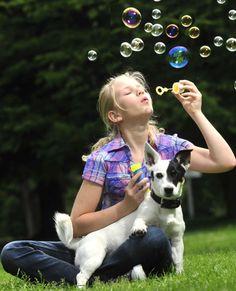 Wenn das Kind ein Haustier will...