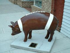 # 14 of the 2004 Pigs in the City II, of Lexington, NC. (Pork BBQ Capital of the World). Was sponsored by Smurfit-Stone Container Corp. Lexington, NC Plant, and the artists were Bill and Barbara Gordon. It was located on N. Main St. in front of Joe's Grill.