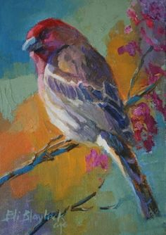 Red House Finch - oil by ©Elizabeth Blaylock (via DailyPainters)