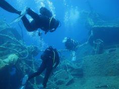 Scuba Diving. Scuba Diving, Diving