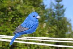 A Brilliant Indigo Bunting felt pattern. This little indigo bunting is for Lea, who won the drawing on Your Mist Wished for Bird Pattern. I've not seen one on the farm, but friends nearby report many sightings. The biggest challenge… Felt Owls, Felt Birds, Felt Animals, Felt Cat, Felt Patterns, Bird Patterns, Craft Patterns, Bird Christmas Ornaments, Felt Ornaments