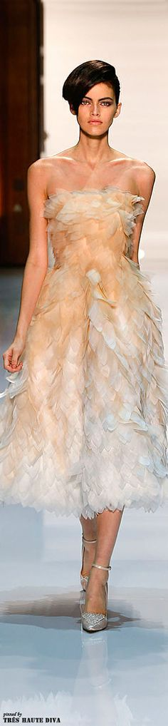 Georgea Hobeika Spring/Summer 2014 Couture