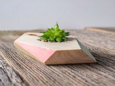 Geometric Wood succulent planter Desk decor Small by rebelwoody