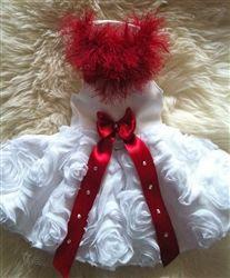 Couture Valentina Dress- Apparel -  Dress Clothes Posh Puppy Boutique $400⁉