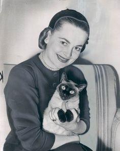 Olivia de Havilland, 1950s, with her cat
