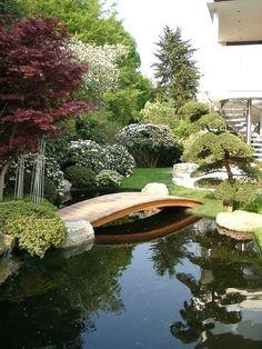 The beautiful backyard gardening #backyardgardening