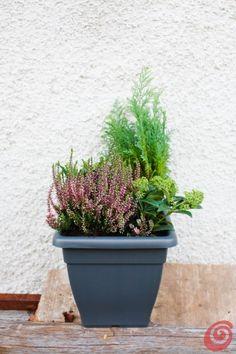 Oltre 25 fantastiche idee riguardo fioriere per davanzale - Fioriere per davanzale finestra ...