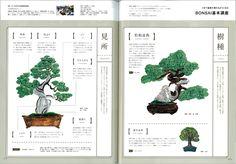 「DiscoverJapan vol.44」特集 草花生活