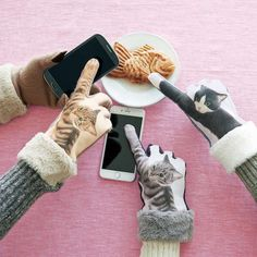 These Cat Gloves Give You A Kitty Paw Punchin' Finger