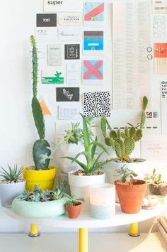 JOELIX.com   Plants in my home office