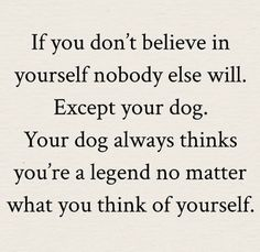 Words Quotes, Wise Words, Me Quotes, Funny Quotes, Sayings, I Love Dogs, Puppy Love, Shih Tzu, Great Quotes