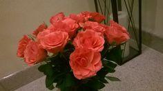Cudne różowe róże :)