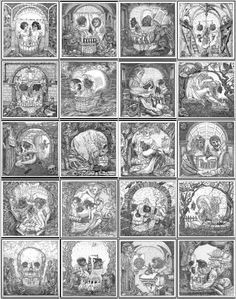 Skull Optical Illusions for Ship of Fools by Artist Istvan Orosz. So cool!