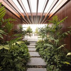 designed by Jacobsen Arquitetura located in . photography by Fernando Guerra Use to be… What Is Landscape, Landscape Design Plans, Tropical Garden Design, Tropical Landscaping, Landscaping Ideas, Outdoor Steps, Interior Garden, Bathroom Interior, Kitchen Interior