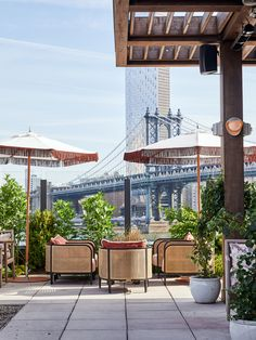 Soho House adds colourful rooftop to Dumbo House in Brooklyn New York Rooftop, Rooftop Terrace, Outdoor Areas, Outdoor Dining, Brooklyn Neighborhoods, Soho House, Brooklyn New York, Outdoor Swimming Pool, Ceiling Windows