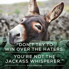 Don't try to win over the haters. You're not the jackass whisperer.