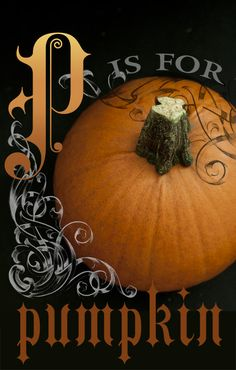 John and Elana Talk About Food - Blog - What To Do With a Pumpkin... How to roast a pumpkin.