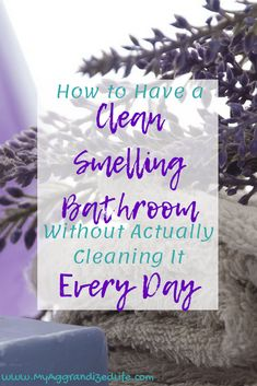 Ways to keep your bathroom clean all week in less than 10 minutes a day My Aggrandized Life