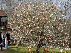albero di pascqua