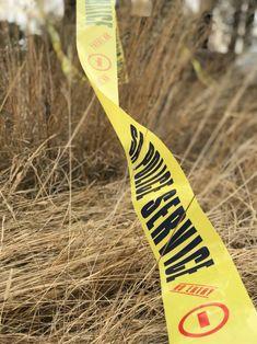 Man met bobbejaansleutel op kleinhoewe aangeval: Maroela News: