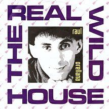45cat - Raul Orellana - The Real Wild House (Radio Mix) / Entre Dos Aguas (The Night Time Edit) - BCM - UK - BCM 322