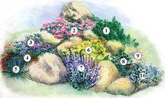 Kamenné záhony | Kvety a Záhrada