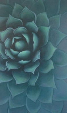 Succulent Painting by Carin Vaughn  Art Turquoise