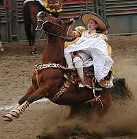 Chicano, Mexican Rodeo, Ranch Riding, Mexican Heritage, Tree Faces, San Luis Obispo County, Swing Dancing, Spanish Culture, South Of The Border
